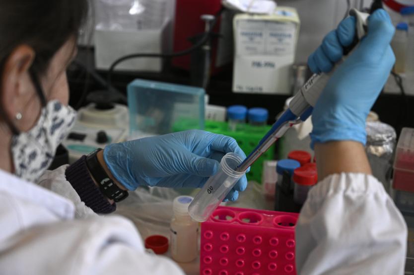 OPS alerta por el alza de infecciones de Covid-19 en Sudamérica